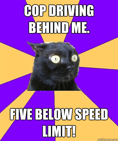 Cop driving behind me  five below speed limit! - Anxiety Cat