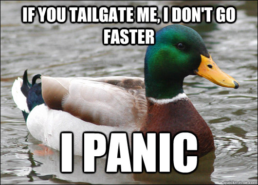 if you tailgate me, i don't go faster i panic - if you tailgate me, i don't go faster i panic  Actual Advice Mallard
