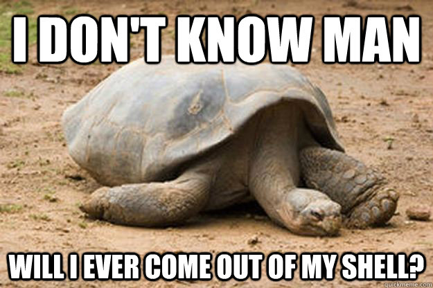 i don't know man  will i ever come out of my shell?  Depression Turtle