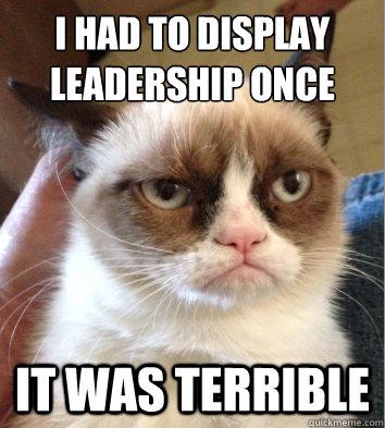 i had to display leadership once it was terrible