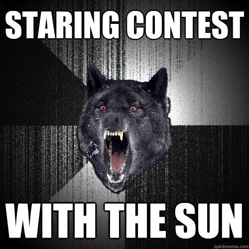 staring contest with the sun - staring contest with the sun  Insanity Wolf