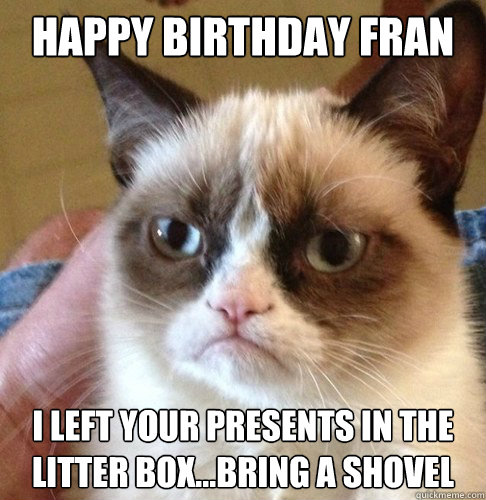 Happy birthday Fran I left your presents in the litter box...bring a shovel  Happy Birthday Angry Cat
