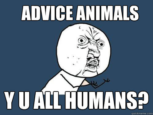 Advice Animals y u all humans? - Advice Animals y u all humans?  Y U No