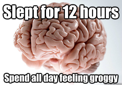 Slept for 12 hours Spend all day feeling groggy  - Slept for 12 hours Spend all day feeling groggy   Scumbag Brain