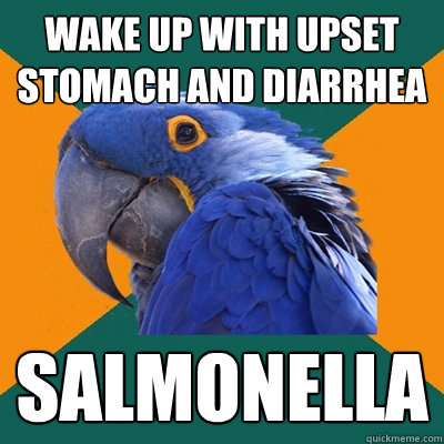 wake up with upset stomach and diarrhea Salmonella - wake up with upset stomach and diarrhea Salmonella  Paranoid Parrot