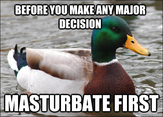 before you make any major decision masturbate first - before you make any major decision masturbate first  Actual Advice Mallard