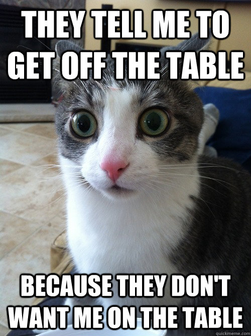 they tell me to get off the table because they don't want me on the table  Sudden Clarity Cat