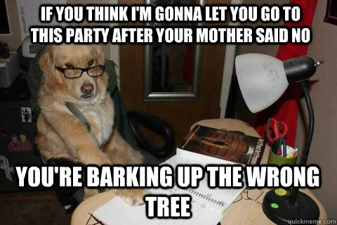 If you think I'm gonna let you go to this party after your mother said no you're barking up the wrong tree - If you think I'm gonna let you go to this party after your mother said no you're barking up the wrong tree  Financial Advice Dog
