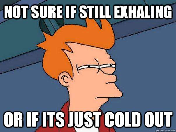 not sure if still exhaling or if its just cold out - not sure if still exhaling or if its just cold out  Futurama Fry