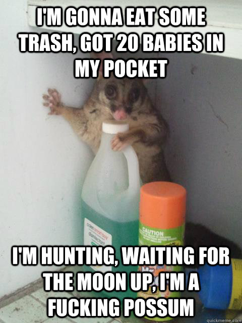 I'm gonna eat some trash, got 20 babies in my pocket I'm hunting, waiting for the moon up, I'm a fucking possum