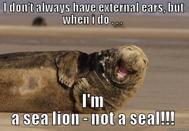 I DON'T ALWAYS HAVE EXTERNAL EARS, BUT WHEN I DO . . .  I'M A SEA LION - NOT A SEAL!!! Sea Lion Brian