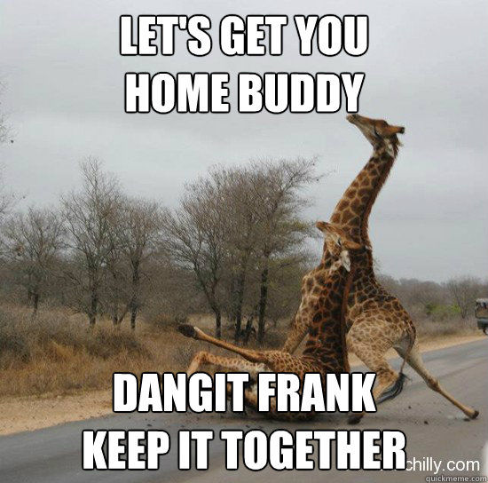 Let's get you  home buddy Dangit Frank  Keep it together