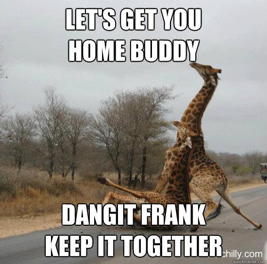 b361141391f2a6f462403208ec45f1604ba2ee7ffe8439e99b742a187d5faf8b let's get you home buddy dangit frank keep it together giraffe,Get Home Meme