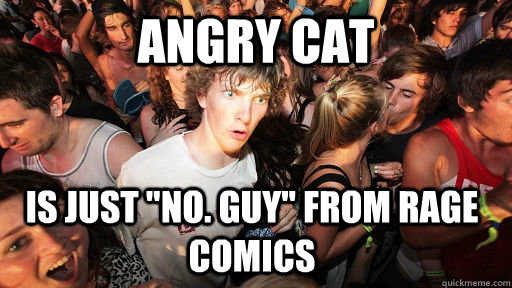 Angry Cat Is just