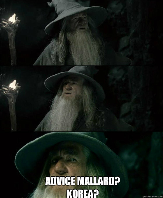 Advice Mallard? Korea? -  Advice Mallard? Korea?  No memory Gandalf