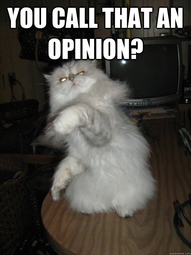 You call that an opinion?