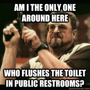 Am i the only one around here Who flushes the toilet in public restrooms? - Am i the only one around here Who flushes the toilet in public restrooms?  Am I The Only One Round Here