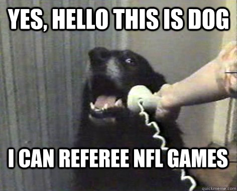 yes, hello this is dog i can referee nfl games  yes this is dog