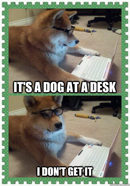 It's a dog at a desk I don't get it