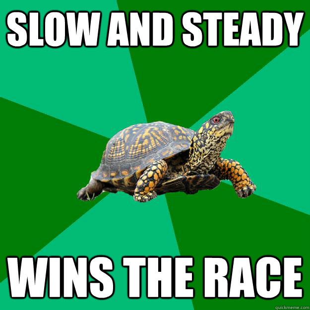 Slow and steady wins the race - Slow and steady wins the race  Torrenting Turtle