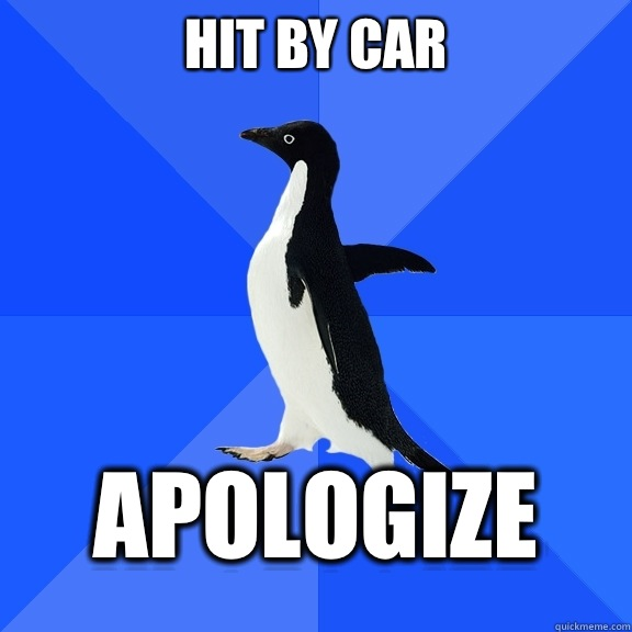 Hit by car apologize - Hit by car apologize  Socially Awkward Penguin