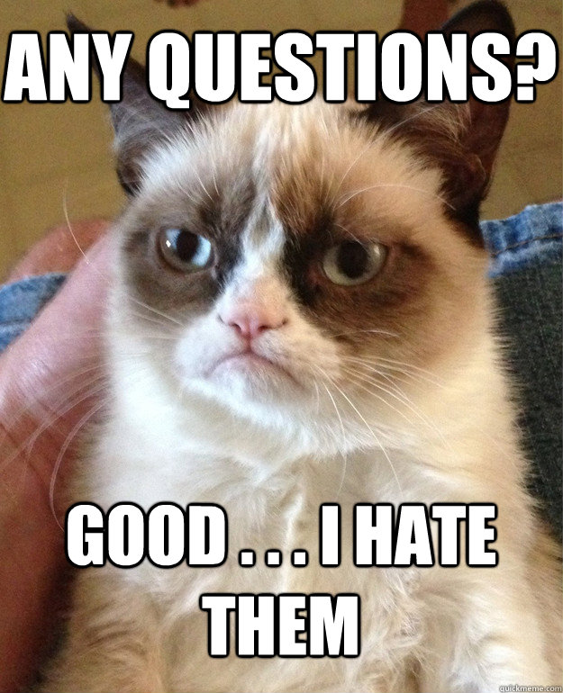 Any Questions? Good . . . I hate them - Any Questions? Good . . . I hate them  Grumpy Cat