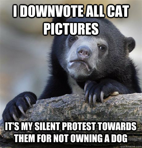 I DOWNVOTE ALL CAT PICTURES IT'S MY SILENT PROTEST TOWARDS THEm FOR NOT OWNING A DOG - I DOWNVOTE ALL CAT PICTURES IT'S MY SILENT PROTEST TOWARDS THEm FOR NOT OWNING A DOG  Confession Bear
