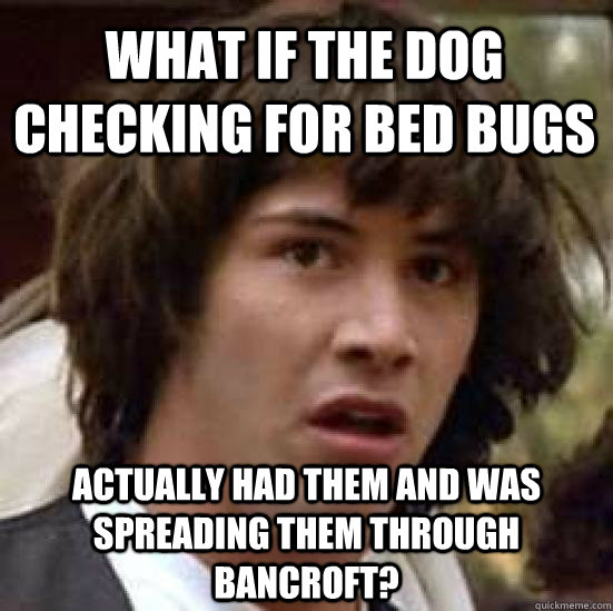 what if the dog checking for bed bugs actually had them and was spreading them through Bancroft? - what if the dog checking for bed bugs actually had them and was spreading them through Bancroft?  conspiracy keanu