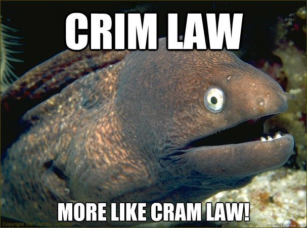 crim law more like cram law! - crim law more like cram law!  Bad Joke Eel