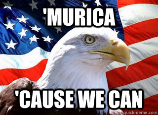 b44c30733f4382a0739a93ff7303d94d73d2dc617236147bbac4d5d3d70829bf murica 'cause we can american eagle and flag quickmeme