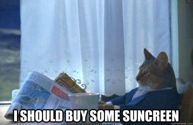 I should buy some suncreen -  I should buy some suncreen  Sophisticated Cat