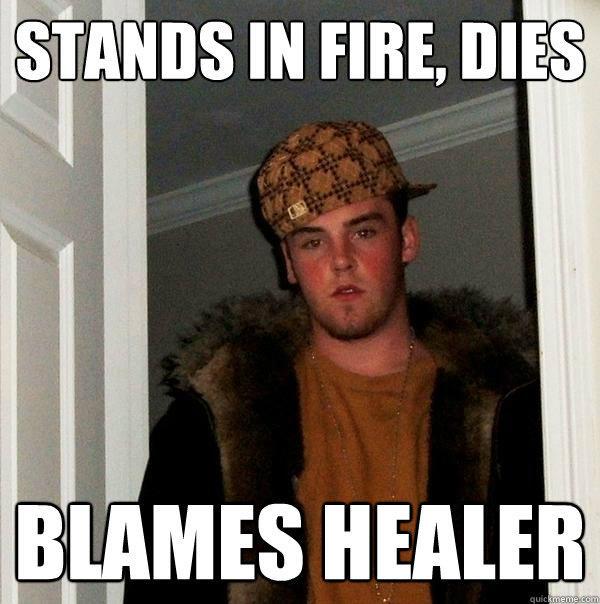 Stands in fire, dies Blames healer - Stands in fire, dies Blames healer  Scumbag Steve