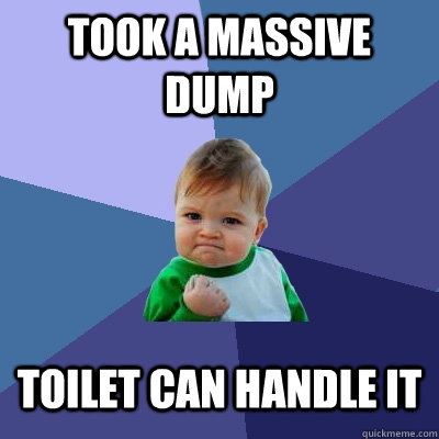 Took a massive dump toilet can handle it - Took a massive dump toilet can handle it  Success Kid