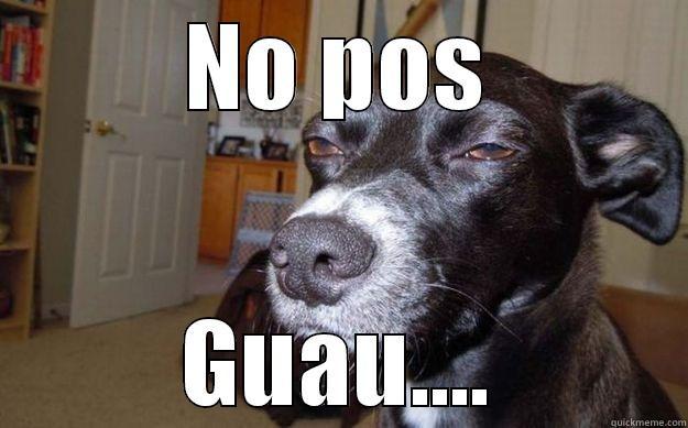 NO POS GUAU.... Skeptical Mutt