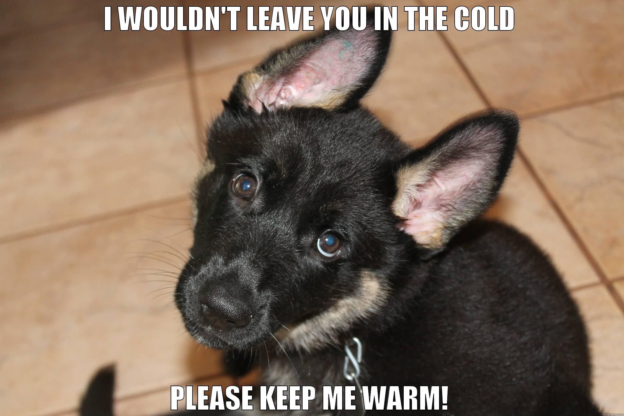 I WOULDN'T LEAVE YOU IN THE COLD PLEASE KEEP ME WARM! Misc