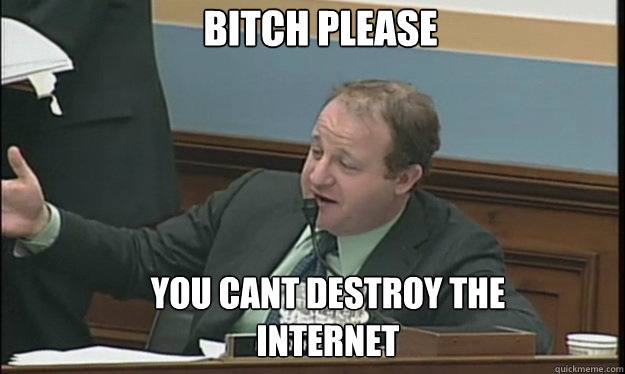 BITCH PLEASE YOU CANT DESTROY THE INTERNET  SOPA sucks