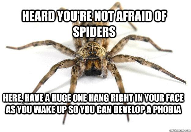b4a83b0c2229924a2a67a08096869b6e1111ab26b860d9a2e99855f90f35c9bf the goddamn bugs whacked us johnny! goddamn bugs quickmeme