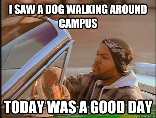 I saw a dog walking around campus Today was a good day - I saw a dog walking around campus Today was a good day  today was a good day