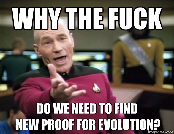 why the fuck do we need to find  new proof for evolution? - why the fuck do we need to find  new proof for evolution?  Annoyed Picard HD