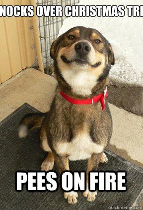 Good Dog Greg memes | quickmeme