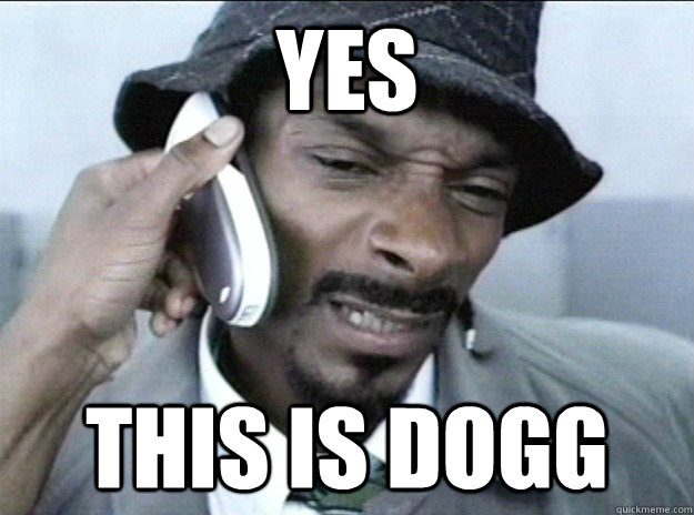 YES this is dogg - YES this is dogg  Misc