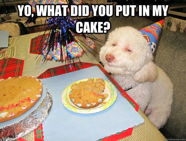 Stoned Dog Birthday Cake