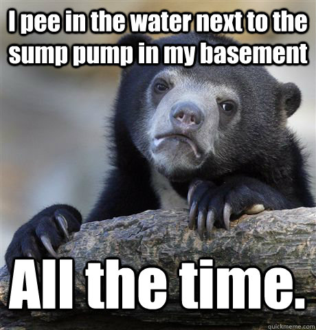 I pee in the water next to the sump pump in my basement All the time. - I pee in the water next to the sump pump in my basement All the time.  Confession Bear