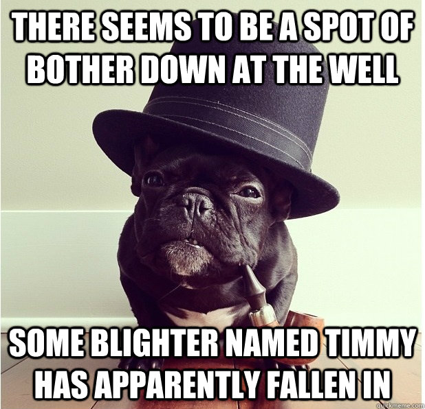 There seems to be a spot of bother down at the well Some blighter named timmy has apparently fallen in - There seems to be a spot of bother down at the well Some blighter named timmy has apparently fallen in  Old Boy Bulldog