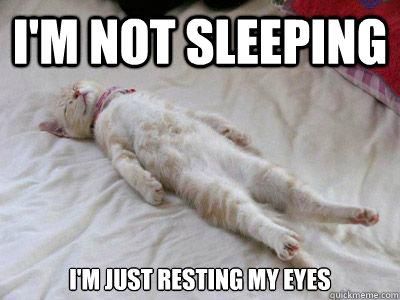 I'm not sleeping I'm just resting my eyes - I'm not sleeping I'm just resting my eyes  Misc