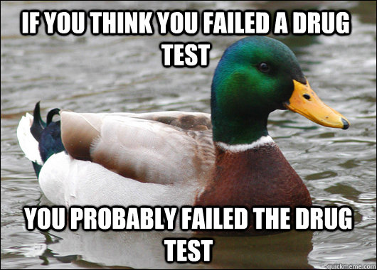 if you think you failed a drug test you probably failed the drug test - if you think you failed a drug test you probably failed the drug test  Actual Advice Mallard
