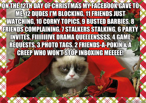 on the 12th day of christmas my facebook gave to me, 12 dudes i'm blocking, 11 friends just watching, 10 corny topics, 9 busted barbies, 8 friends complaining, 7 stalkers stalking, 6 party invites, fiiiiiiiive drama queeeenssss, 4 game requests, 3 photo t  A Grumpy Cat Christmas