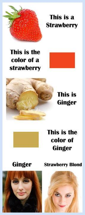 Gingers vs Strawberry Blondes -   Misc