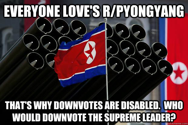 everyone love's r/pyongyang That's why downvotes are disabled.  who would downvote the supreme leader?