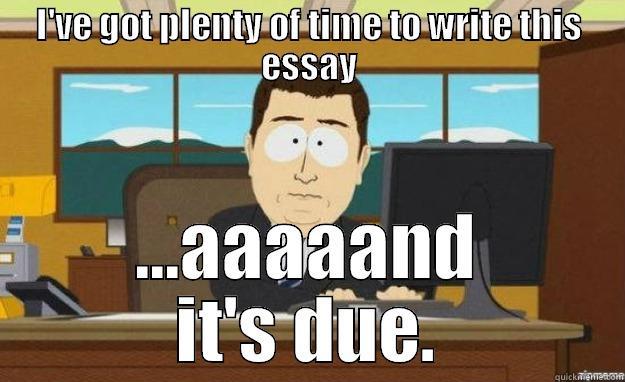 fry essay meme